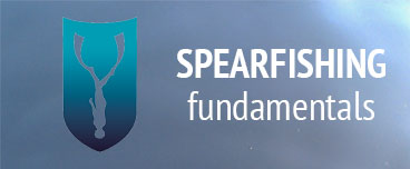 Spearfishing Fundamentals course