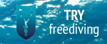 Try Freediving course