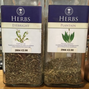 Go Freediving herbs to help equalisation plantain and eyebright in Neals Yard web version