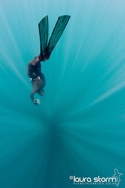 Mark Harris freediving with underwater camera, taken from his book Glass and Water, photo by Laura Storm review at Go Freediving