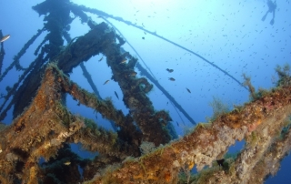 wreck for freediving in Lanzarote