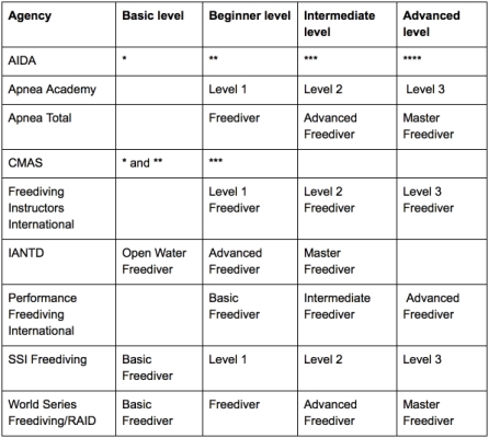 Beginners Guide to Freediving - Do I need to do a freediving course - Freediving Course Provider Equivalency Table
