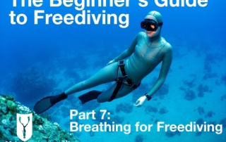 Beginners guide to freediving Breathing for Freediving