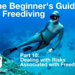 Beginners guide to freediving Dealing with risks associated with Freediving