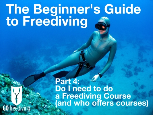 Beginners guide to freediving Do I need to do a Freediving Course and who offers courses