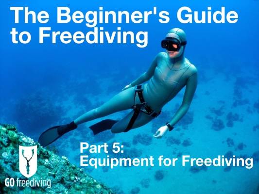 Beginners guide to freediving Equipment for Freediving