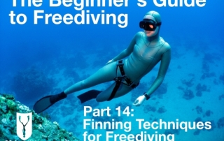 Beginners guide to freediving Finning techniques for freediving