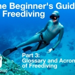 Beginners guide to freediving Glossary and Acronyms of Freediving