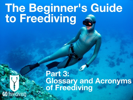 Beginners guide to freediving Glossary of Freediving