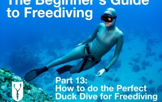 Beginners guide to freediving How to do the perfect duck dive for freediving