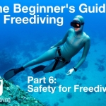 Beginners guide to freediving Safety for Freediving
