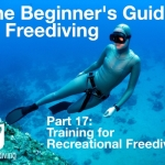 Beginners guide to freediving Training for recreational Freediving