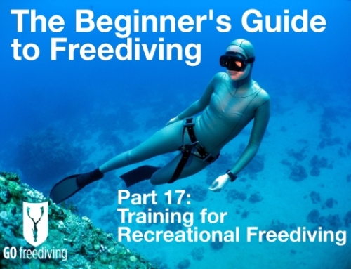 Training for Recreational Freediving
