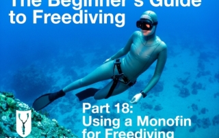 Beginners guide to freediving Using a monofin for Freediving