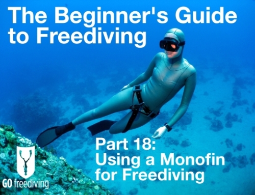 Using a Monofin for Freediving