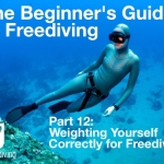 Beginners guide to freediving Weighting yourself correctly for Freediving