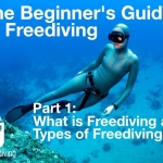 Beginners guide to freediving what is freediving