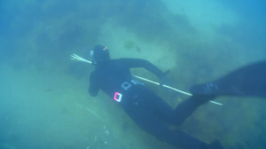 Spearfishing on Jamie and Jimmy's Friday night feast, Jimmy Doherty Freediving in the sea