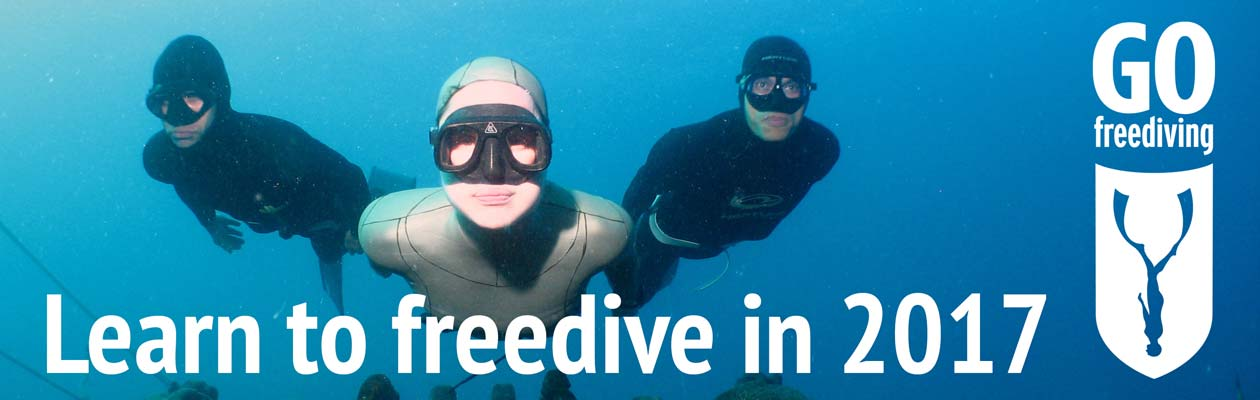 Learn to freedive with Go Freediving