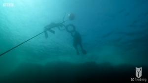 BBC Britain's Secret Seas, the power of the East, Emma Farrell breathing up for a freedive in the Farne Islands