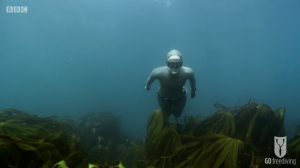 BBC Britain's Secret Seas, the power of the East, Emma Farrell freediving in the Farne Islands