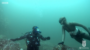 BBC Britain's Secret Seas, the power of the East, Emma Farrell freediving with Paul Rose on Scuba in the Farne Islands 2
