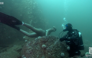BBC Britain's Secret Seas, the power of the East, Emma Farrell freediving with Paul Rose on Scuba in the Farne Islands 5