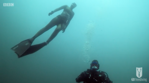 BBC Britain's Secret Seas, the power of the East, Emma Farrell freediving with Paul Rose on Scuba in the Farne Islands 7