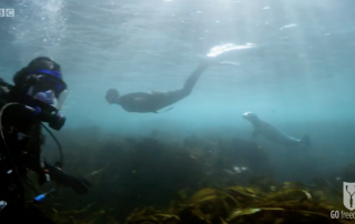 BBC Britain's Secret Seas, the power of the East, Emma Farrell freediving with seals and Paul Rose on Scuab in the Farne Islands 5