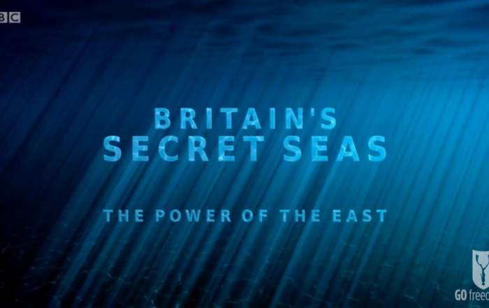 BBC Britain's Secret Seas, the power of the East_web