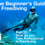 The Beginner's Guide to Freediving How to Turn Professional in Freediving