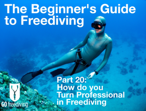 Turn professional in freediving – How to do it