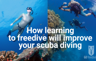 Learn to freedive with Go Freediving then learn to scuba dive