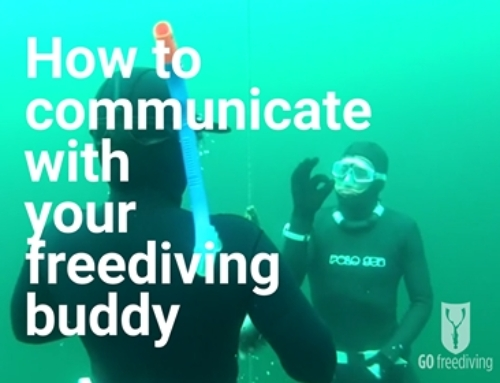 How to communicate with your freediving buddy