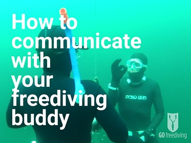 go freediving - how to communicate with your freediving buddy - main image