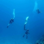 Liveaboard diving holiday on the Red Sea - Underwater