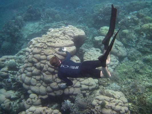 Go freediving - freediving and photography - Lance Sagar - freediving