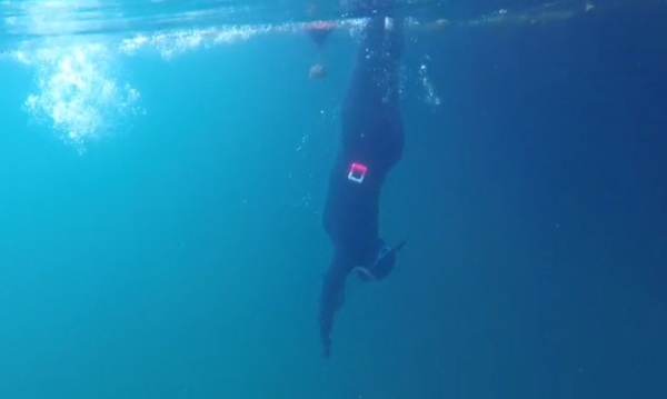 gofreediving - freediving techniques - visiblility