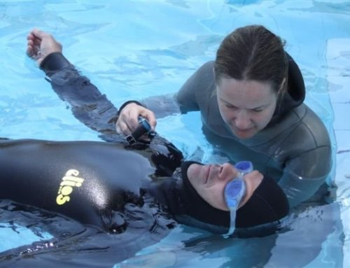 Private Freediving Tuition – What are the benefits?