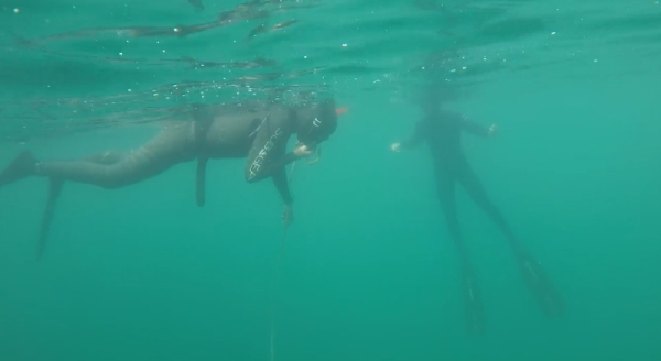 go freediving - freediving courses with Go Freediving - photo13