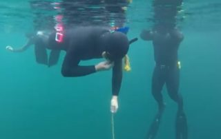 go freediving - learn to freedive safely - open water3