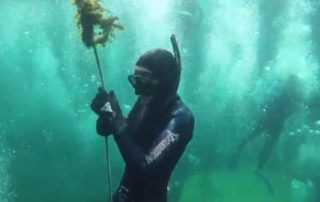 go freediving - what happens on a freediving course - day2.2