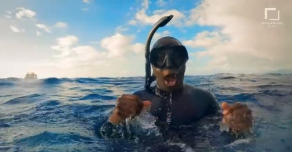 go freedving - freediving with sperm whales - patrick ayree 11