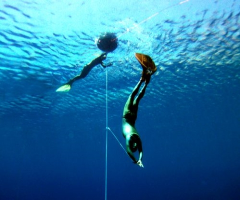 tenerife freediving holiday