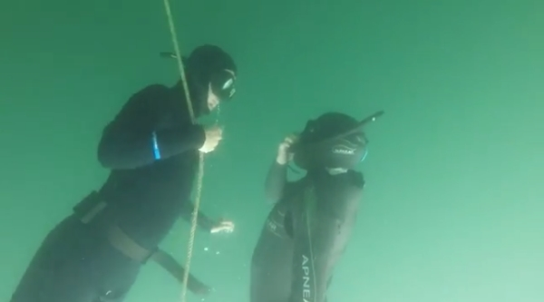 When is the best time to do a freediving course8