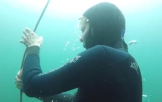 consider on a freediving course -11