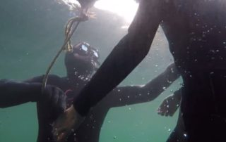 consider on a freediving course -safety