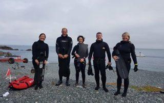freediving with sharks -coastal