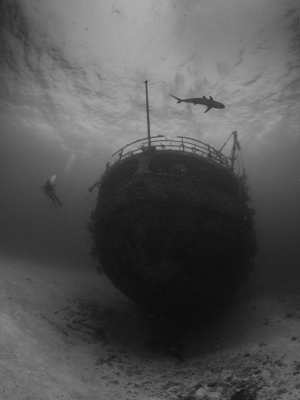 Ship Final 2