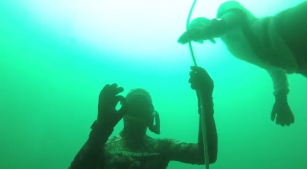 freediving in october - vobster12